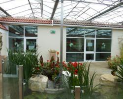 Units 1 & 2 GlassHouse Studios Fordingbridge